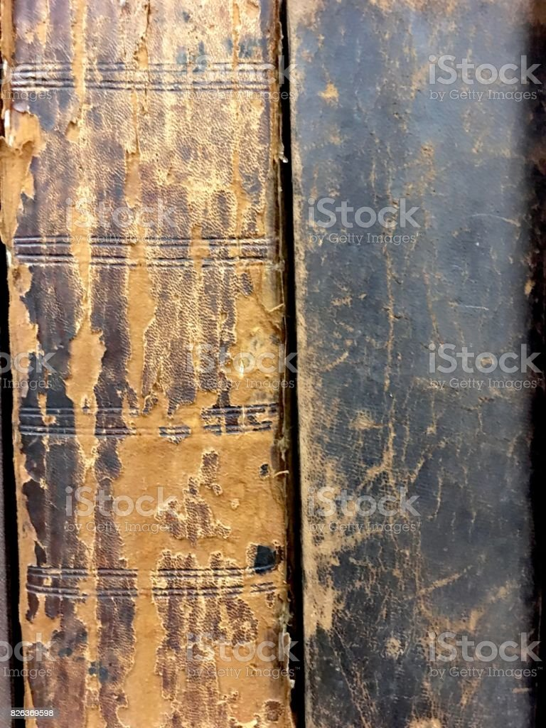Book spines of 19th century books stock photo