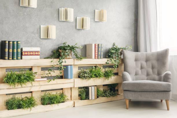 boeken en planten op plank - plank meubels stockfoto's en -beelden