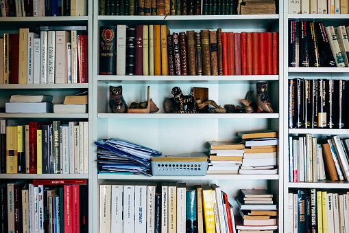 Books and souvenirs on shelves in home library