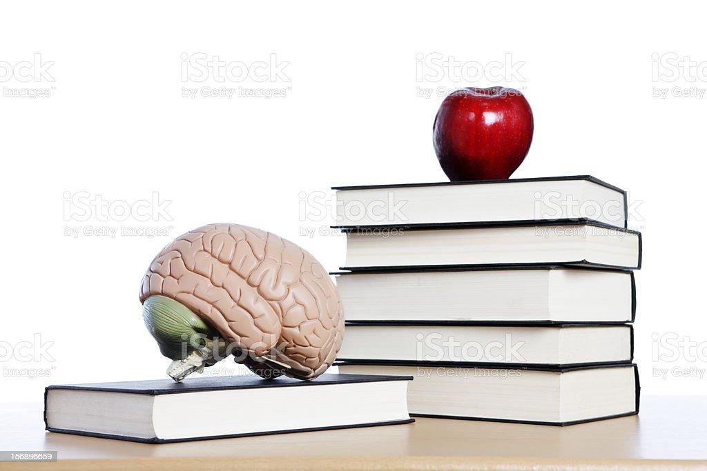 Fotografía de Libros Cerebro Y Una Manzana Todo Lo Necesario Para ...