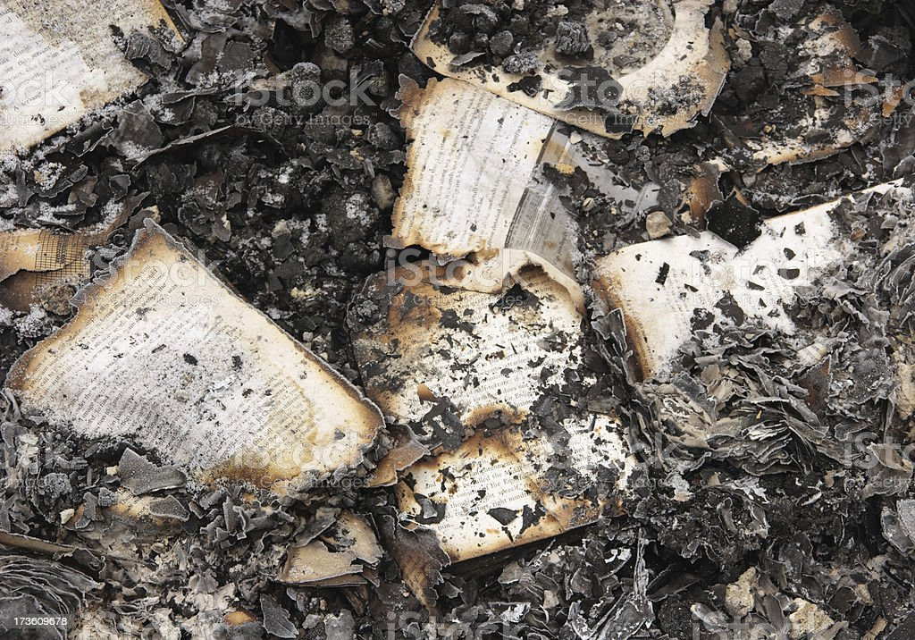 Books burned in a fire royalty-free stock photo