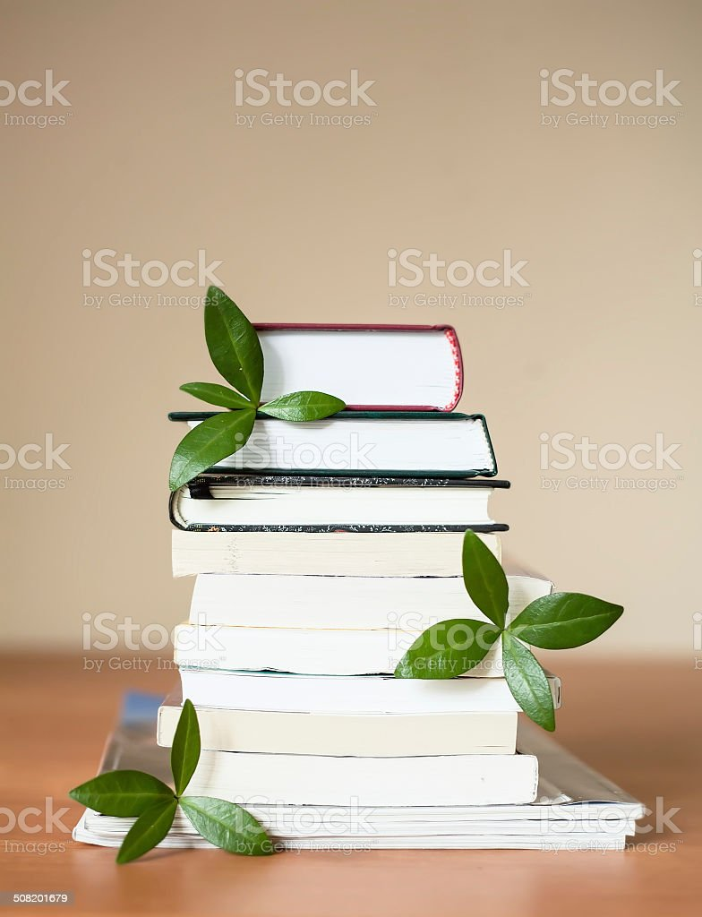 books for knowledge and the brain with leaves stock photo