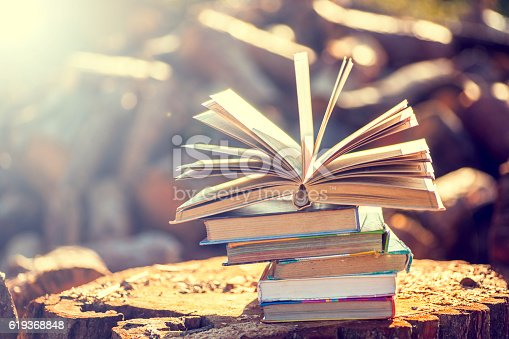 istock books on natural background. 619368848