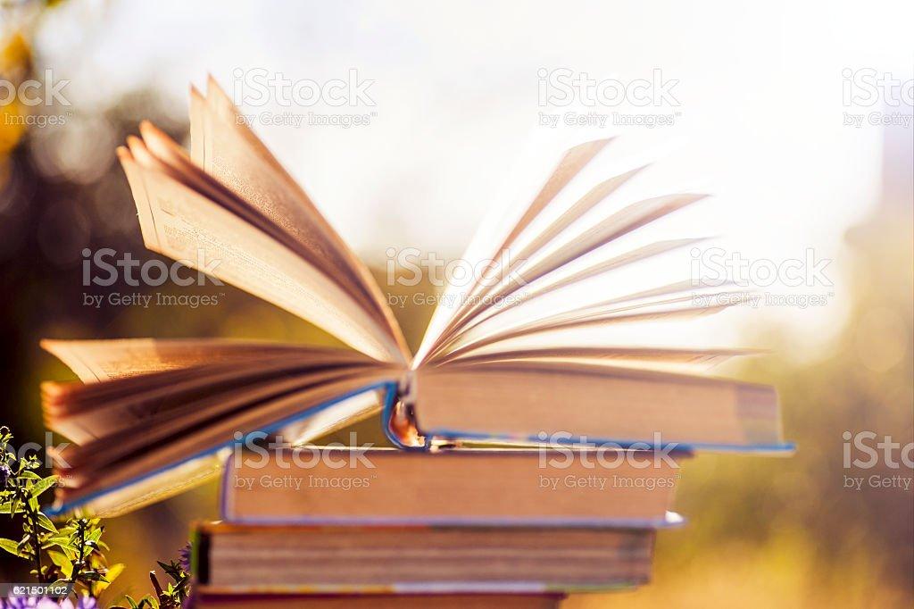 books on natural background. Lizenzfreies stock-foto