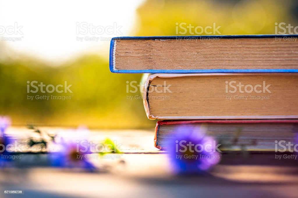 books on natural background. photo libre de droits