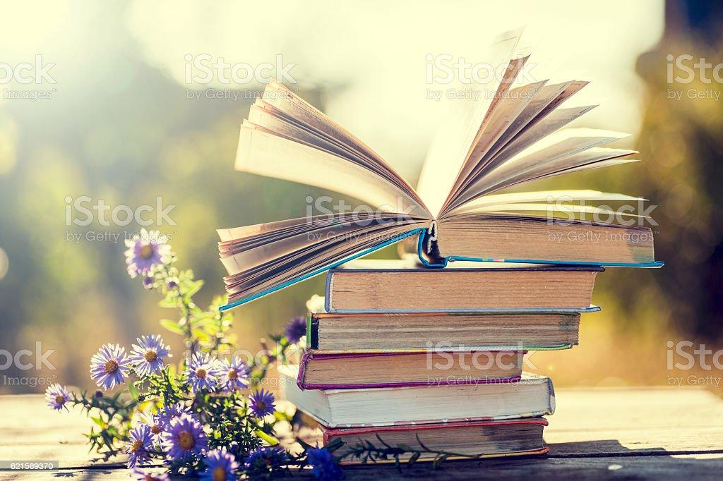 books on natural background. photo libre de droits