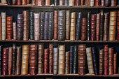Bookshelf wallpaper rows.