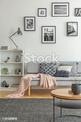Bookshelf with knick knacks next to comfortable grey sofa in chic living room