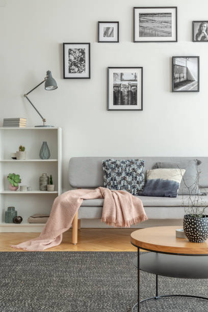 Bookshelf with knick knacks next to comfortable grey sofa in chic living room stock photo