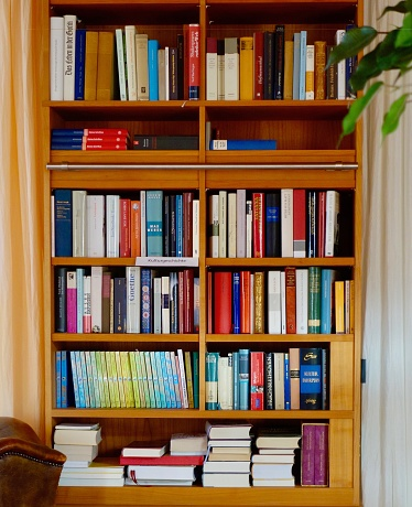 Bookshelf with many different books