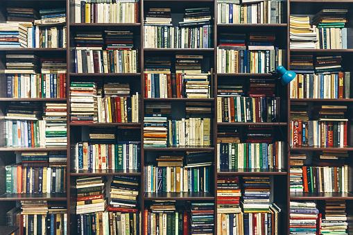 Bookstore. Public Old Library. Creativity Concept