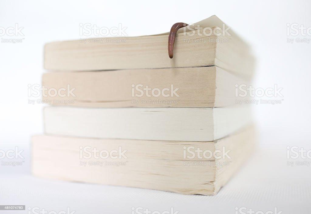 Bookworm- Earthwrom stock photo