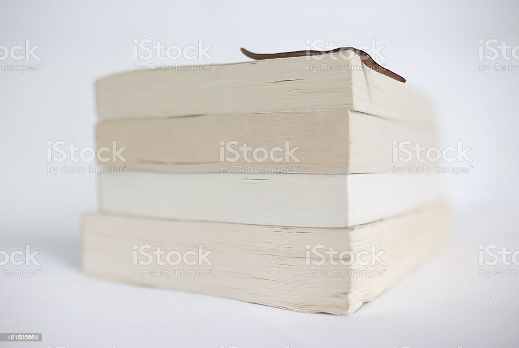 Bookworm on white background stock photo