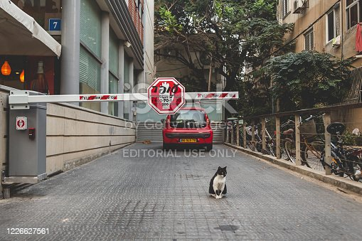 Tel Aviv / Israel-13/10/18: A boom barrier to private parking on a street in Tel Aviv; a black and white cat sitting beneath the barrier