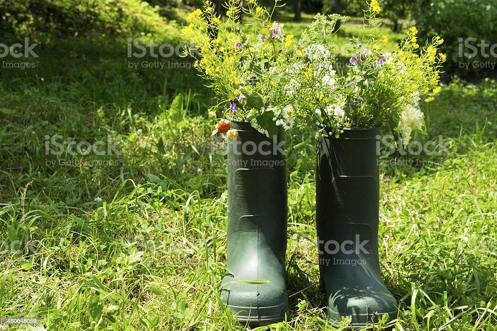 Boot Flowerpot in garden royalty-free stock photo