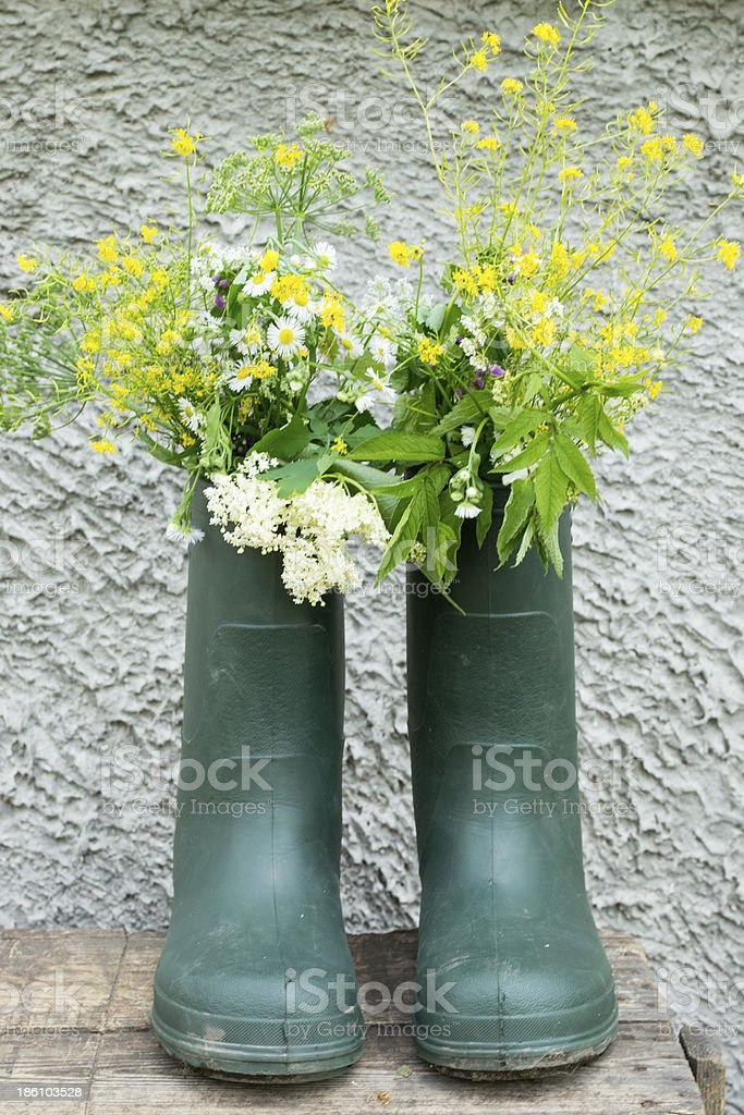 Boot Flowerpot on grey background stock photo