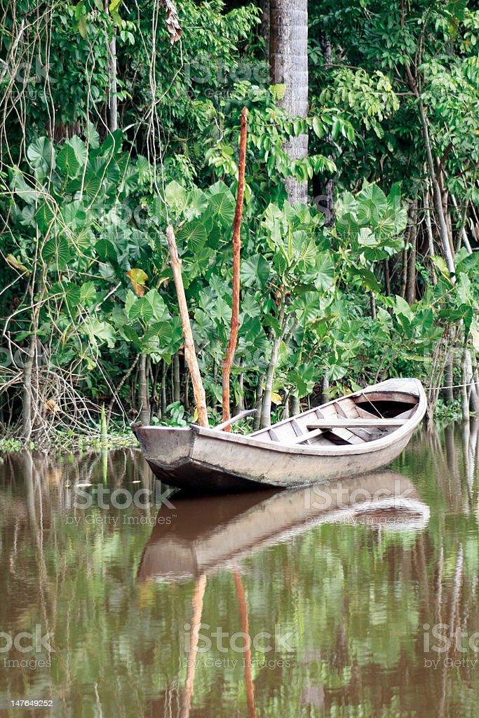 Boot im Orinoco Delta stock photo