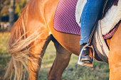 Close up look on a boot in a stirrup.