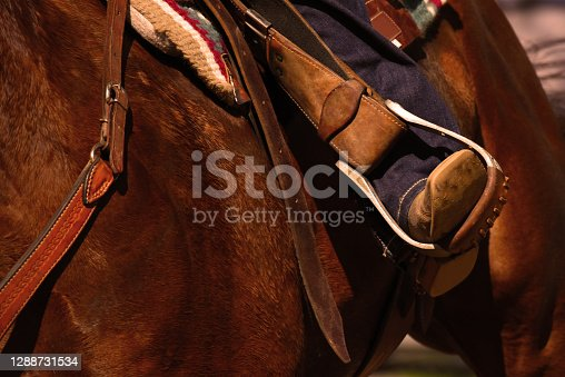 A close-up of a horse rider's boot in a stirrup.