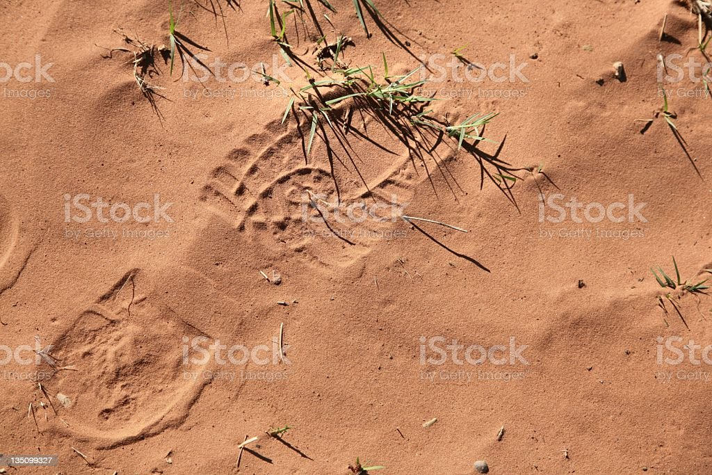 Boot Print in Sand royalty-free stock photo