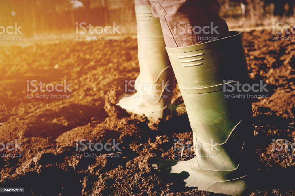 Boots in the mud - foto stock