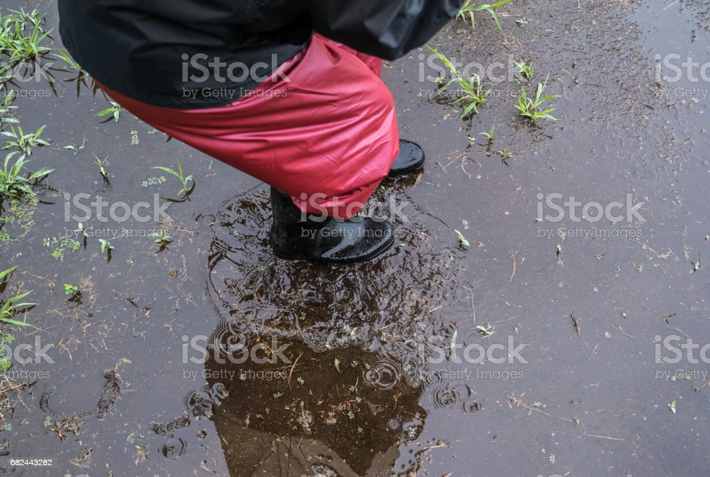 Boots walking in a puddle royalty-free stock photo