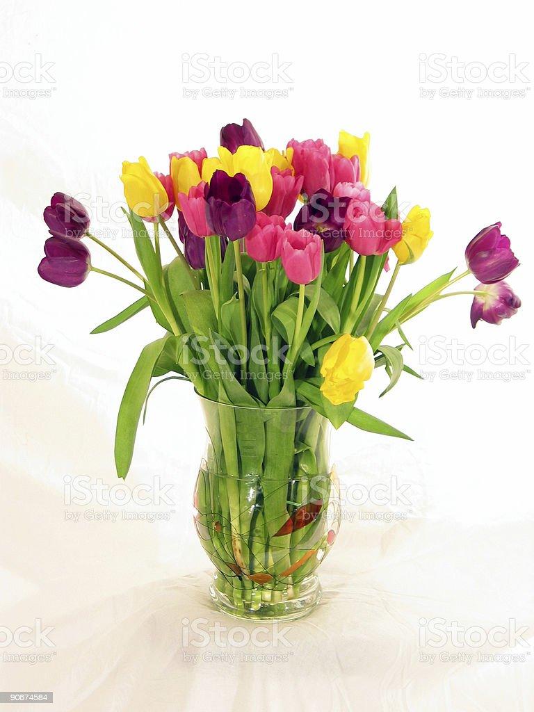 Boquet of Tulips royalty-free stock photo