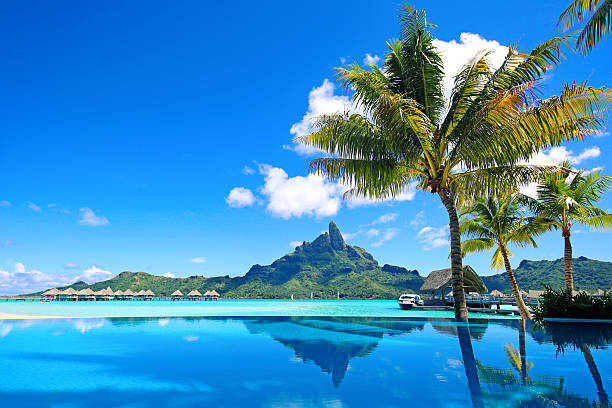Bora Bora Infinity Pool Mt Otemanu reflected in swimming pool.  oceania stock pictures, royalty-free photos & images
