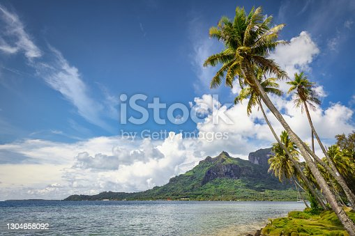 Natural Bora Bora Island Beach with Palm Trees hanging over the lagoon, Mount Otemanu volcanic Mountain Range under blue summer cloudscape in the background. Bora Bora Island, Leeward Islands, Society Islands, French Polynesia