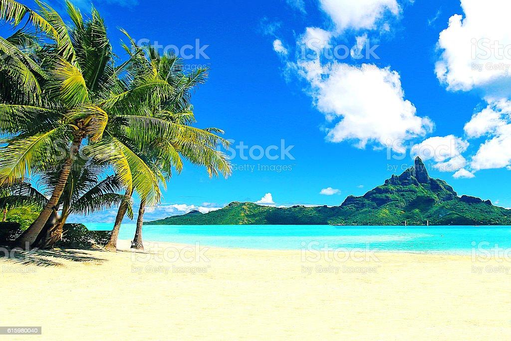 Bora Bora Tahiti Beach Mt Otemanu Palm Trees stock photo