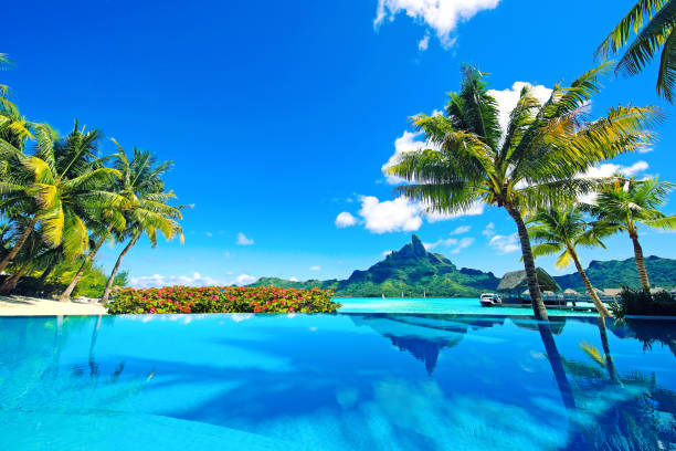 Bora Bora Tahiti French Polynesia Beautiful infinity pool, Mt Otemanu and flowers in Tahiti. south pacific ocean stock pictures, royalty-free photos & images