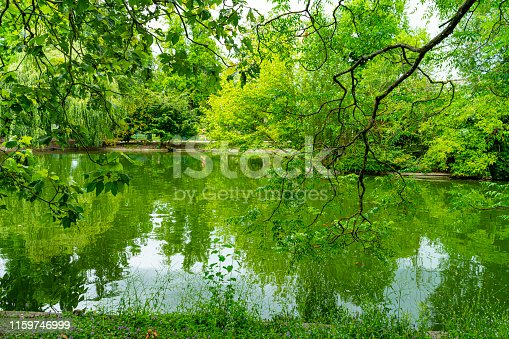 Bordeaux, France, Public park with still waters on a lake and the branches of nearby trees overhanging the water.
