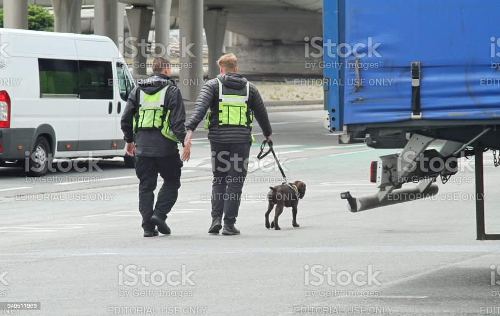 Border control at Dover port UK, two security guards and a trained sniffer dog stock photo