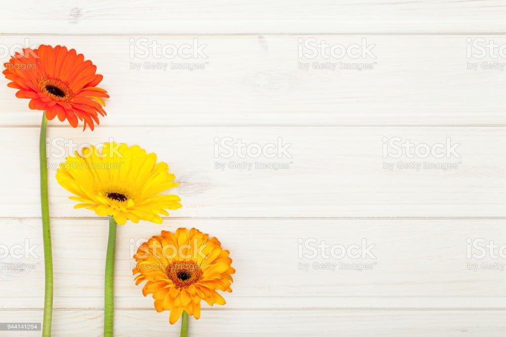 Grenze Hat Der Garten Bunte Blumen Gerbera Auf Weissem Rustikalen