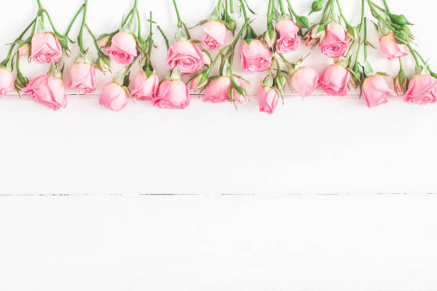 Border made of pink rose flowers flat lay top view picture id909735820?b=1&k=6&m=909735820&s=612x612&w=0&h=nmxrqswsrwgyh6iadmj4ksu kn2pm0pun6gmib8gm0k=