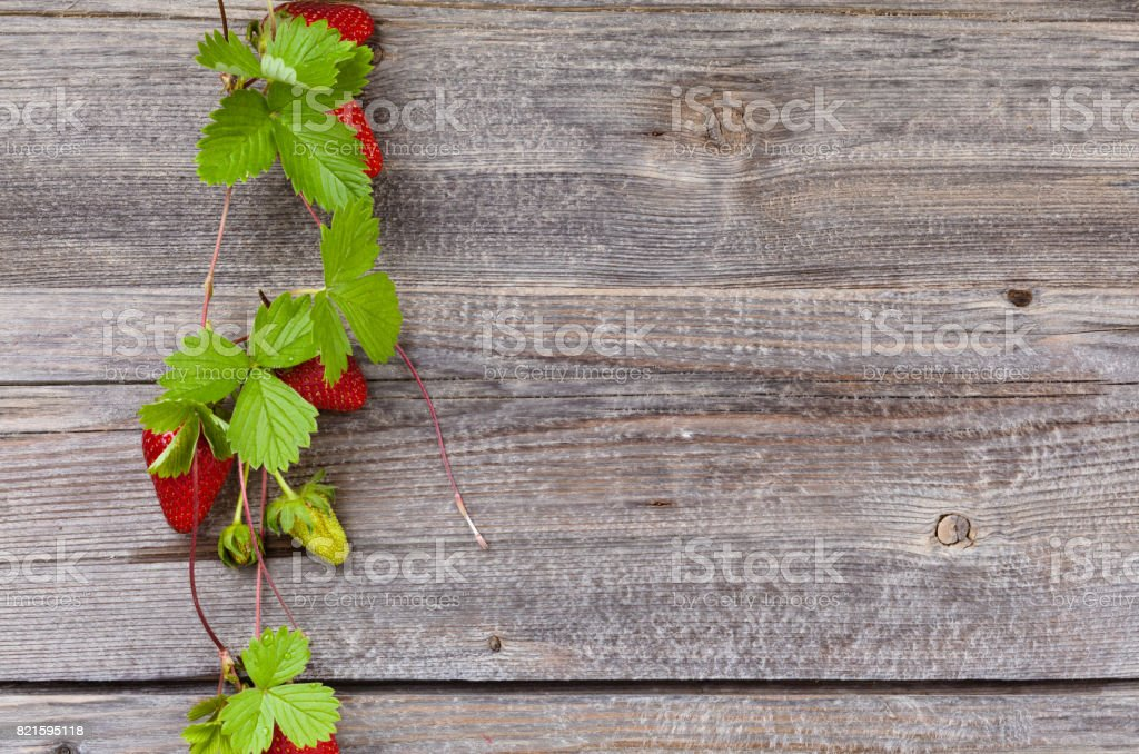 Border of fresh strawberries. stock photo