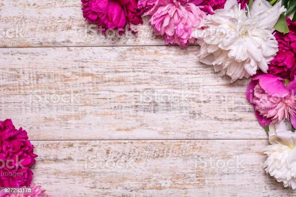 Border of peonies on a wooden background with empty space for text picture id927293178?b=1&k=6&m=927293178&s=612x612&h=8x0b 0mjefoo0n p3alh st8scad2cd2czwz5ht0l7o=
