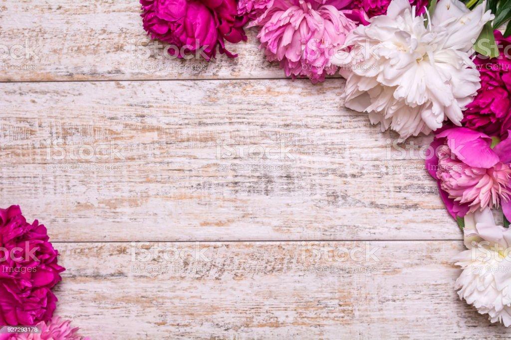 Frontera de peonías sobre un fondo de madera con hueco para el texto - foto de stock