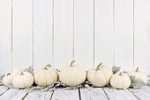 Border of white pumpkins and leaves, white wood background