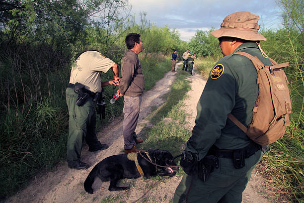 Border Patrol, Rio Grande Valley, Texas, Sept. 22, 2015 La Paloma, Texas, USA - September 22, 2015:  A  Border Patrol agent accompanied by his tracking dog transfers an illegal Mexican alien who has recently come ashore to another agent near the Rio Grande River.  Such encounters are a daily experience in the Rio Grande Valley sector of Border Patrol operations. border patrol stock pictures, royalty-free photos & images