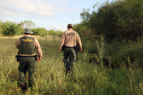 Border Patrol, Rio Grande Valley, Texas, Sept. 22, 2015 La Paloma, Texas, USA - September 22, 2015:  Two Border Patrol agents accompanied by a tracking dog search for illegal Mexican aliens who have recently come ashore near the Rio Grande River.  Such encounters are a daily experience in the Rio Grande Valley sector of Border Patrol operations. department of homeland security stock pictures, royalty-free photos & images