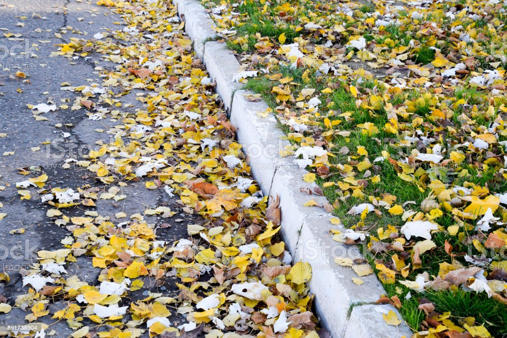 Border sidewalk strewn with dry leaves stock photo