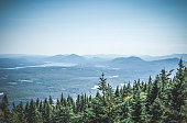 View over boreal forest and misty mountains. Canadian nature.