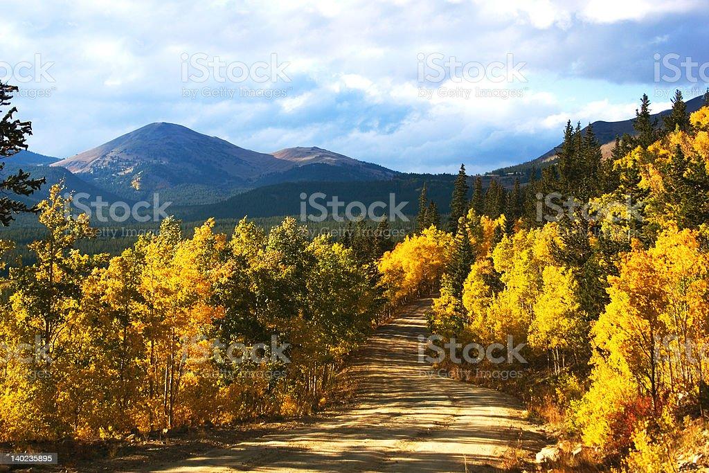 Boreas Pass with Aspenglow (Colorado) Boreas Pass, Colorado. Setting sun creates an amber aspenglow. Close to Breckenridge. Adventure Stock Photo