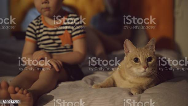 Bored little boy siiting on bed with cat while his parents surfing picture id894943252?b=1&k=6&m=894943252&s=612x612&h=b0hkuvymx1np9rldvfv6jmldkjchdajkobcq5ue71ba=