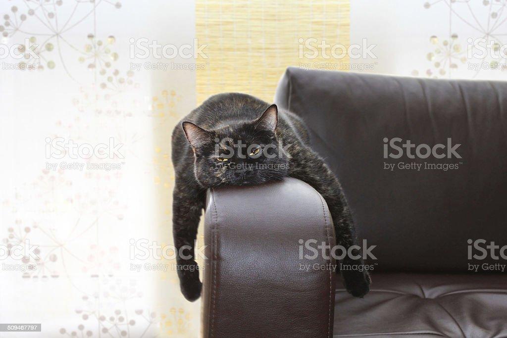 boring stock photo