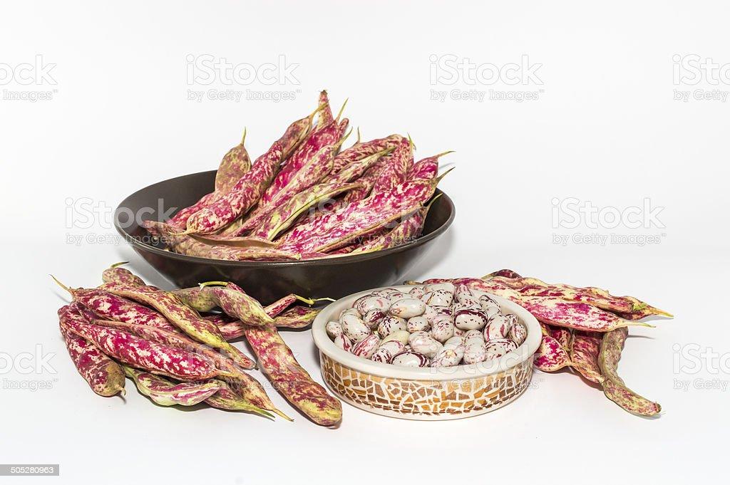 Borlotti beans stock photo
