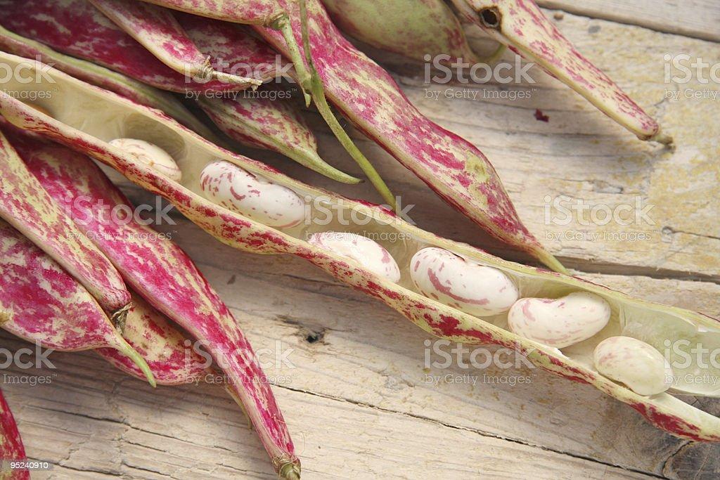 Borlotto beans stock photo