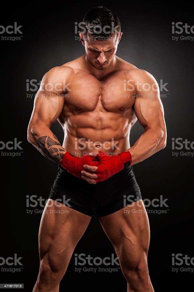 Born to Fight royalty-free stock photo