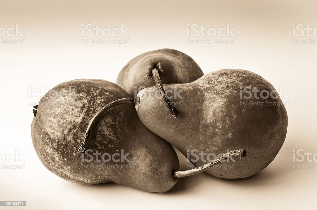 Bosc Pears royalty-free stock photo